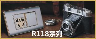不锈钢拉丝面板开关R118系列