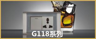 不锈钢拉丝面板开关G118系列