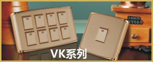 金色面板开关VK系列