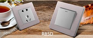 RB5D不锈钢+灰