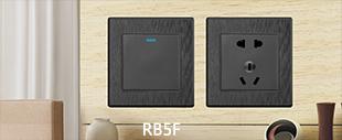 RB5F黑色PC拉丝+LED点开关