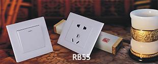 RB55E系列